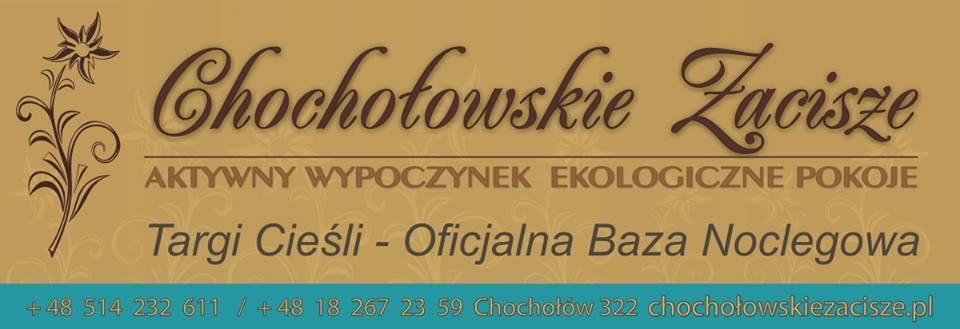 Logotyp Chochłowskie Zacisze
